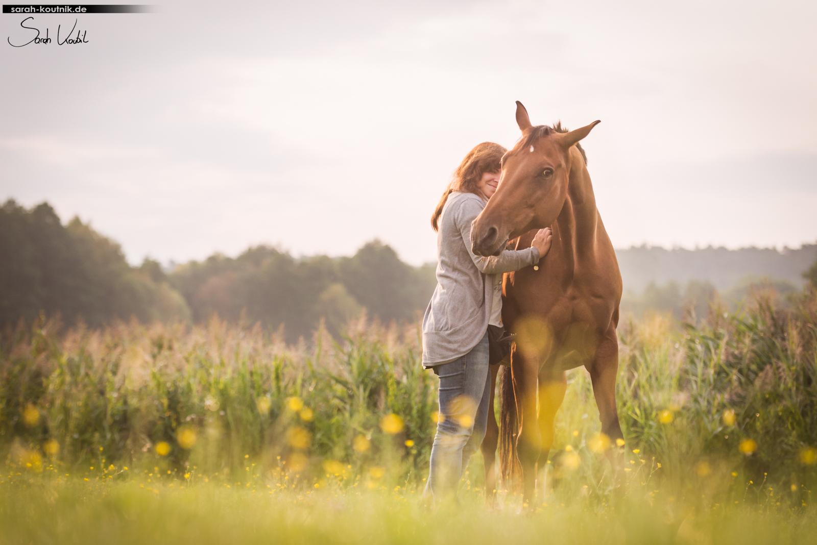Emotionen einfangen | Warmblutstute Chance | Pferdefotografie | Berlin | München | Sarah Koutnik Fotografie