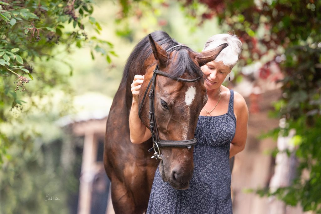 Shootingbericht | Lauser | Wallach Portrait unter Bäumen |Pferdefotografie München | Sarah Koutnik Fotografie