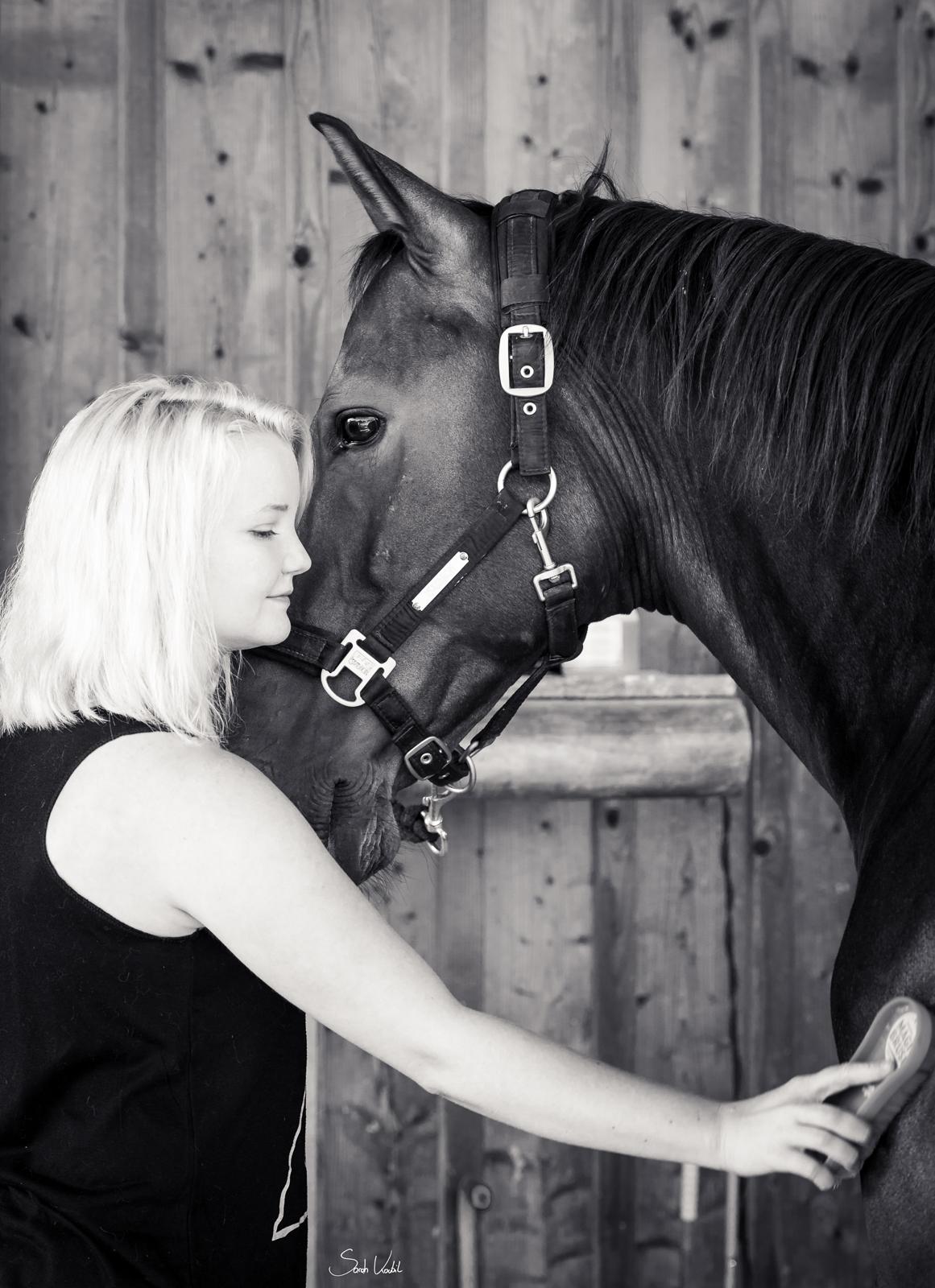 authentische Pferdefotografie | Sarah Koutnik Fotografie | München Krailling Bayern |