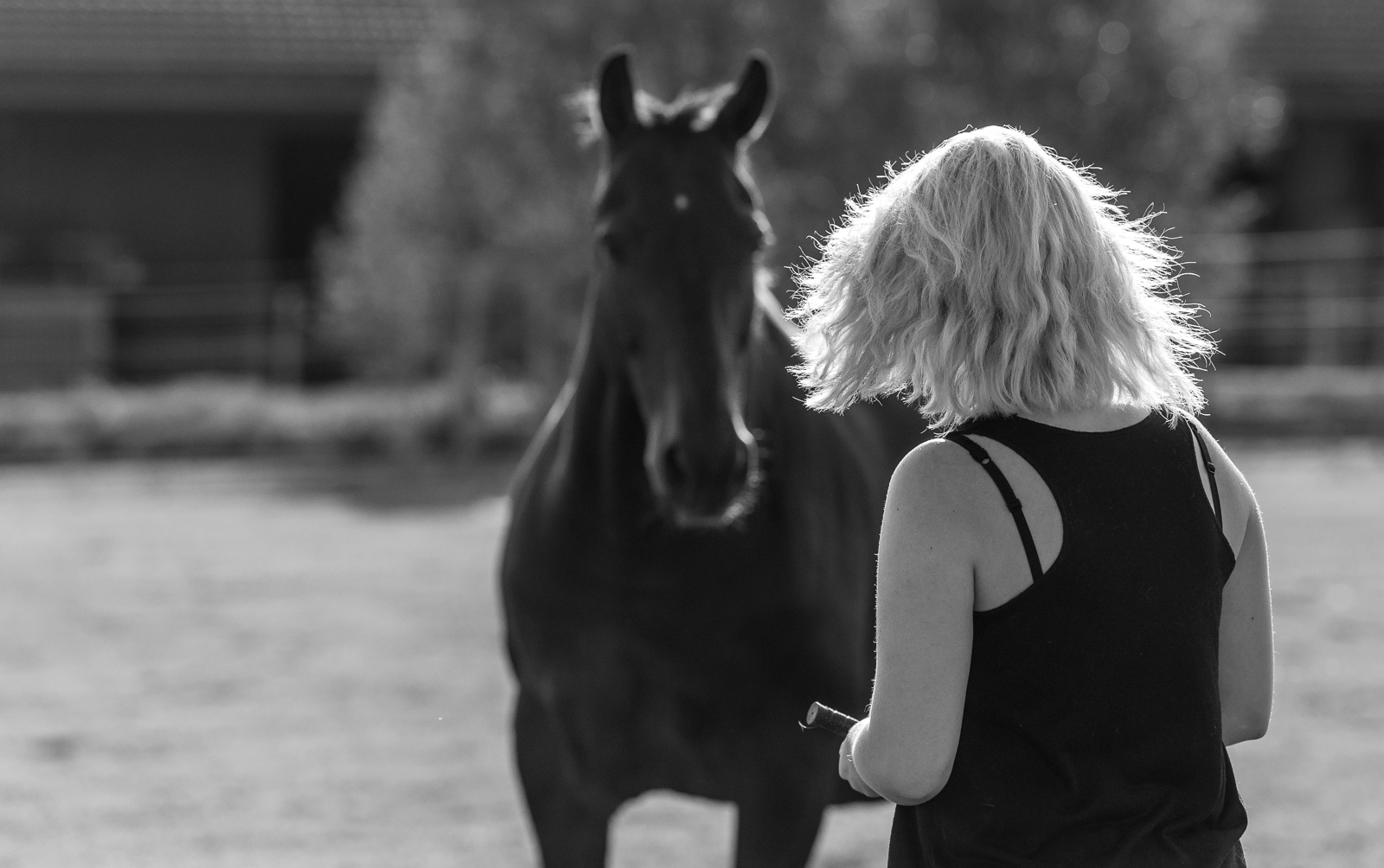 Schwarz weiß Foto | Pferd und Mensch bei der Freiarbeit | dokumentarische Pferdefotografie | Sarah Koutnik Fotografie