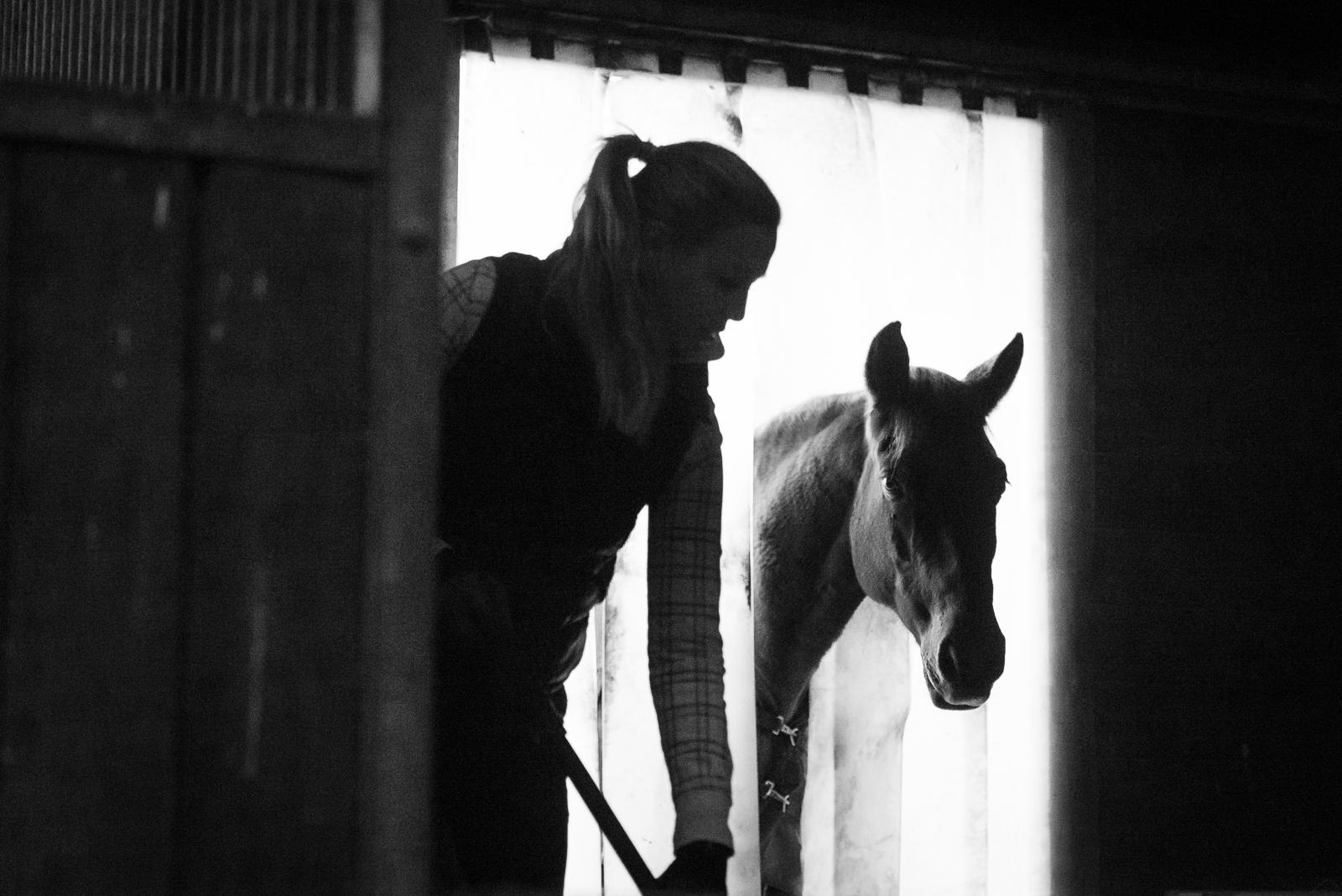 Authentische Pferdefotografie | Eschuleo Box Misten | Sarah Koutnik Fotografie | München Krailling | Portfolio
