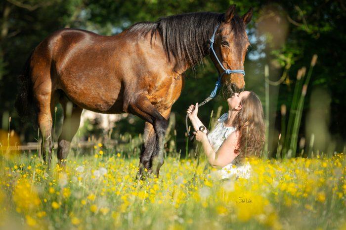 Sarah Koutnik Fotografie   Shooting mit Pferdesenior   Frühlingsshooting   Pferdefotografie